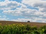 畑とトラクター